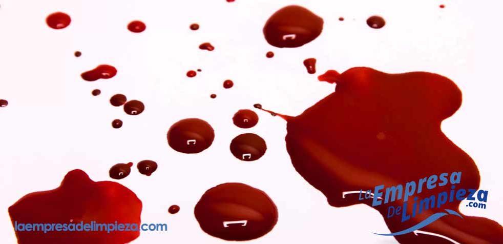 la mejor forma de quitar manchas de sangre