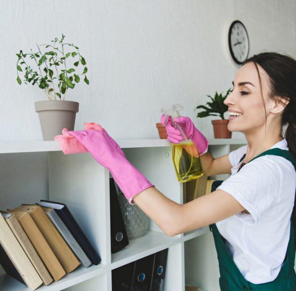 empresa de limpieza en Manlleu