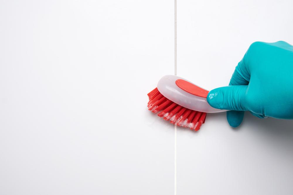 cómo limpiar los hongos
