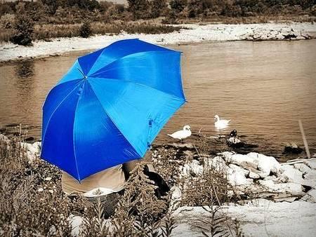 cómo limpiar una paraguas