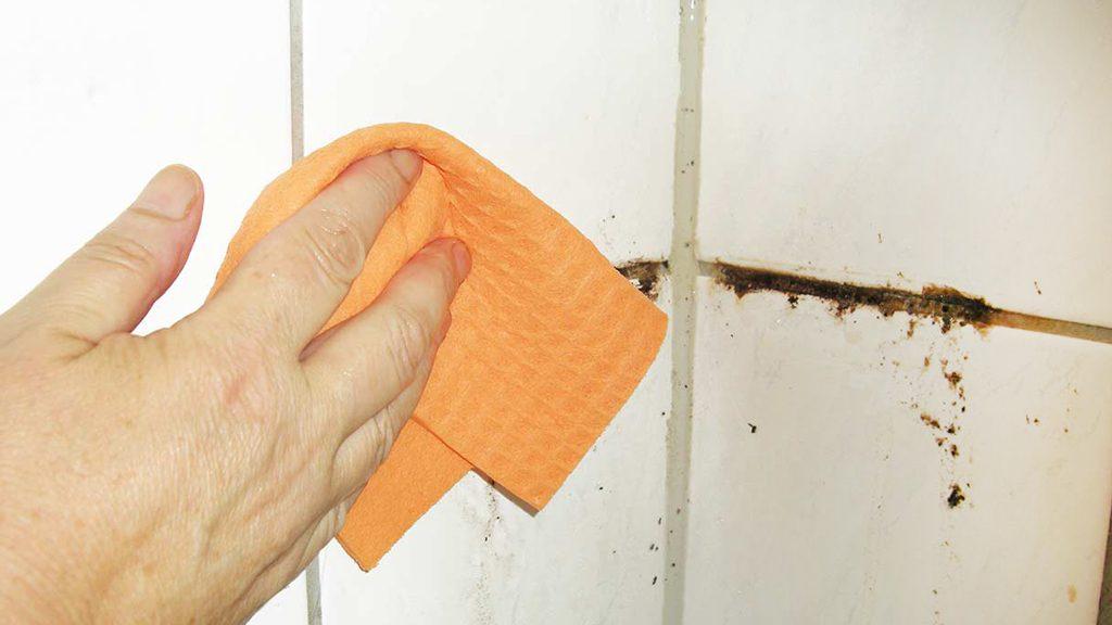 Limpiar azulejos baño