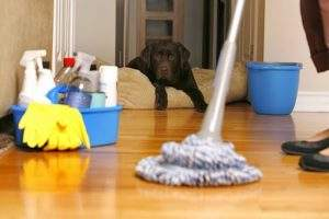 Limpieza en casa