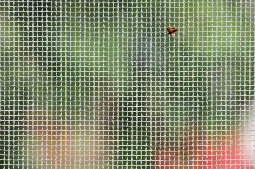 Cómo limpiar mosquiteras