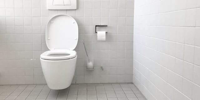 Cómo limpiar wc negro
